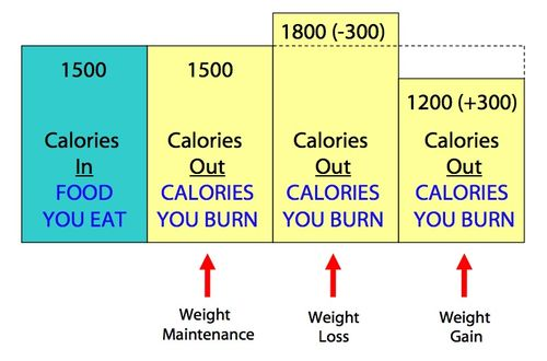 Weektwo_weight101