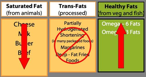 Weekfive_dietaryfats