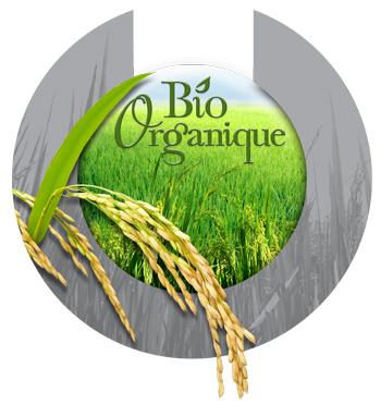 Le-C-Organique_002-07-2009